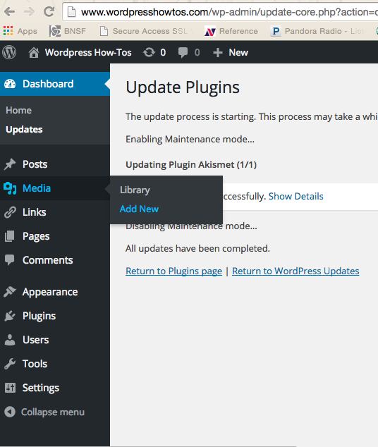 New Tutorial: How to Update WordPress Plugins via WordPress